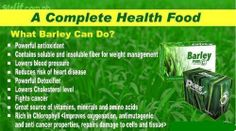 Health is wealth! Pure organic barley grass from new zealand! Be amazed how sante barley makes you more healthy and see the amazing results in Pm ne for inquiries. Lets stay healthy and get rid of illnesses! Barley Benefits, Barley Grass, Lower Blood Pressure, Cholesterol Levels, Endometriosis, Weight Management, Amino Acids, Organic Recipes, How To Stay Healthy