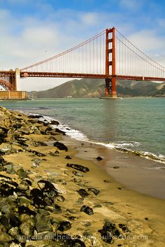 We used to picnic with the children on Crissy Fields in San Francisco Golden Gate Bridge.