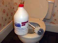 Muriatic acid is best for removing stubborn toilet bowl stains | SILive.com