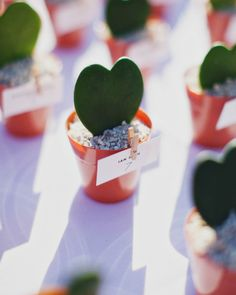 18 Valentine's Day Wedding Ideas From Real Celebrations - The Escort Cards