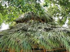 A thatched roof is considered as an essential part of any tiki bar plans because they provide good ventilation as per their nature of construction. This will provide you shade and keep a cooling temperature with necessary ventilation in the summer. You can enjoy a quiet and relaxing atmosphere in tiki bars.