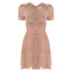 Bowerbird Laced-In Mini Dress