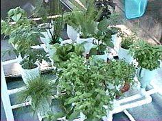 Hydroponics Online: DIY Hydro-garden : TreeHugger