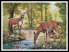 Cross Stitch For Dad Deer in Woodlands with Stream