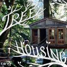 Tree houses aren't just for kids anymore. #TreeHousing #Wanderlusting #SummerofDoing.