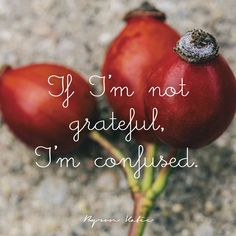 If I'm not grateful, I'm confused.  —Byron Katie