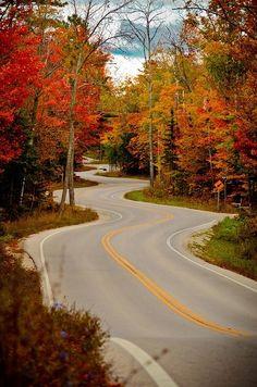 Winding road in Door County, Wisconsin, USA