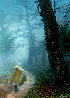 PILGRIM ON A FOREST ROAD -- Into the Mist of Old Japan - T. Enami