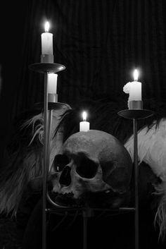 Skull-Bag Of Bones