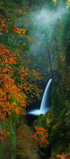 Metlako Falls on Eagle Creek in the Columbia River Gorge east of Portland, Oregon by Dylan Toh & Marianne Lim