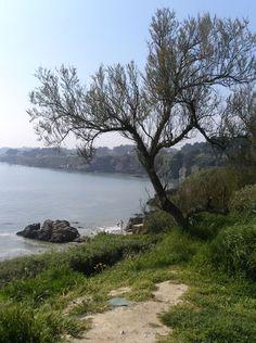 Pornic, sentier des douaniers - Loire-Atlantique     Brittany