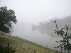 Pantano de Aracena