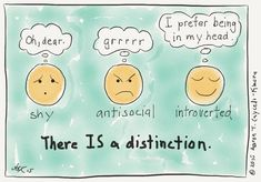 Shy, Antisocial, Introverted. And I am ALL of them...