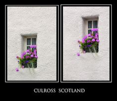 Two Windows With Geranium. Scotland by Jenny Rainbow Urban Photography, Fine Art Photography, Street Photography, Geranium Flower, Fine Art Prints, Framed Prints, Geraniums, Outlander, My Images