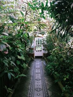 Get advice on the greenhouse electrical system and accessories such as the lights, fans, and radiators, etc. These all help your greenhouse to function. Garden Paths, Garden Landscaping, Walkway Garden, Terrace Garden, Garden Planters, Herb Garden, Vegetable Garden, Dream Garden, Garden Inspiration