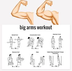 Want Bigger Arms? Try These Exercises ???????? Tag Your Gym Buddy!