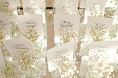 baby's breath escort cards
