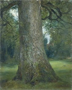Study of the Trunk of an Elm Tree, John Constable, 1821  http://www.theguardian.com/artanddesign/2014/sep/21/frank-auerbach-constable-turner-and-me-interview
