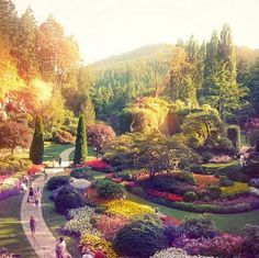 Butchart Gardens! I just couldn't pin it to Nature's Beauty somehow...