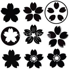 Cherry Blossom  flower silhouette set vector with many style include drawing style and shade