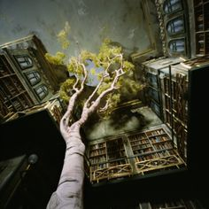 Lori Nix ~ a pinhole camera shot of one of her dioramas (The Library from The City series). Looking up the giant tree coming through the floor of the library. via her blog in Studio Life category