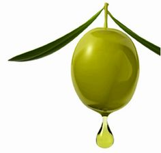 Aceite de oliva para un cabello perfecto Olives Image, Olive Oil Packaging, Olive Gardens, Olive Tree, Hurricane Glass, Raw Food Recipes, Green And Grey, Red Wine, Essential Oils