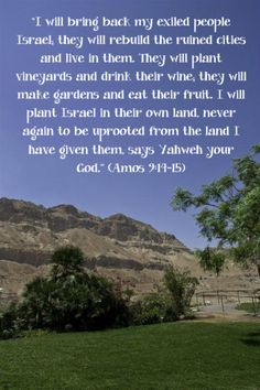 """""""I will bring back my exiled people Israel; they will rebuild the ruined cities and live in them. They will plant vineyards and drink their wine; they will make gardens and eat their fruit. I will plant Israel in their own land, never again to be uprooted from the land I have given them, says Yahweh your God."""" (Amos 9:14-15)"""