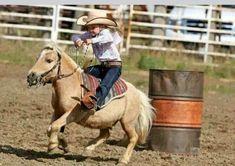 You go girl! Barrel racing sweetie Cute Horses, Pretty Horses, Horse Love, Beautiful Horses, Mini Horses, Poney Miniature, Miniature Ponies, Miniature Horse Tack, Horse Pictures
