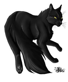 Yellowfang, former Shadowclan warrior turned medicine cat, she was forced out by her forbidden son, the wicked Brokenstar, to Thunderclan