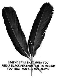 Especially when it started out as a white feather that turned turned black, then you have to get your house smoked  been there, done that