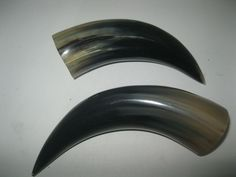 2 Cow horns....0V2D63.....Natural colored, polished cow horns....ox horns