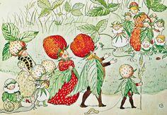 『ラッセの庭で』(1920年) エルサ・ベスコフ画 スウェーデン刊ベスコフは、かぶりもので擬人化するのが好きだ。ここではいちごの一家が、いちごのかぶりものをしている。大人はうれてまっ赤ないちごを、子どもはまだ青いいちご、赤ちゃんはまだ葉っぱの帽子だ。自然の葉っぱと、いちごのこびとの衣装の葉っぱが共通していて、人とこびとと植物の世界をつないでいる/Albert Bonniers Forlag AB, Stockholm