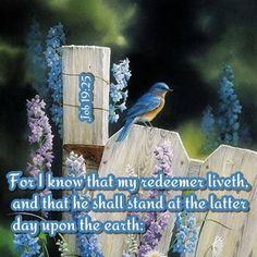 JOB 19:25 - AMEN ♥