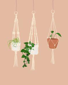 Macramé Plant Hangers Illustration | Tyanna Preeper