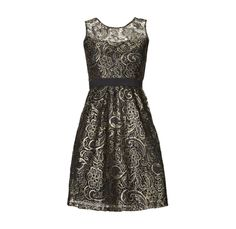 JAKE*S Spitzenkleid mit transparenter Schulterpartie in Metallic Schwarz | FASHION ID Online Shop