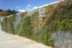 Parete verde esterna realizzata con sistema Perliwall