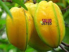 Este es el vegetal mas saludable del mundo y nos hemos olvidado de el POR COMPLETO! - YouTube
