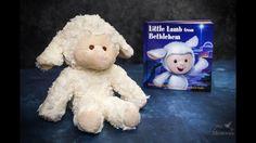 Introducing Little Lamb of Bethlehem - Christ-centered Elf on the Shelf alternative Bethlehem, Elf On The Shelf, Lamb, Alternative, Teddy Bear, Shelves, Books, Christmas, Xmas