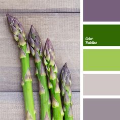 color for interior design, color matching, color of of asparagus, color of thistle flowers, combination of colors for interior decoration, dark lilac, lavender, lilac, shades of purple, silver and purple.