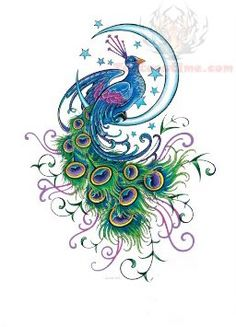 My next tattoo minus the weird things coming off the tail and I want to peacock to look less cartoonish