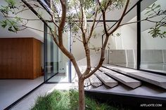 The Skylight House // Chenchow Little Architects