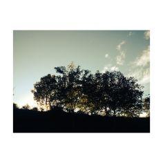 Vic. Autumn