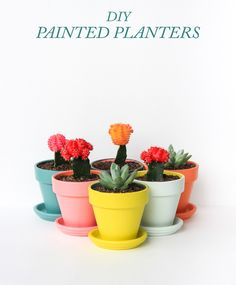 DIY Painted Planters...how to...different color painted pots...love, love, love...