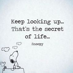 Keep your chin up & keep moving forward. #goodnight #letsgo