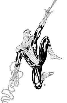 Spider-Man by Mike Deodato, Jr.