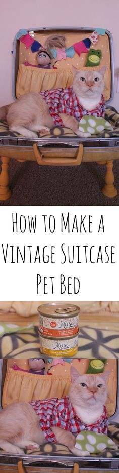 How to Make a Vintage Suitcase Pet Bed #mycatmymuse ad