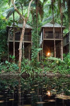 Rainforest villas at the Daintree Eco Lodge and Spa. Daintree, Queensland, Australia