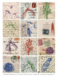 Seedpod Postcards 2.5 inch squares, printable vintage style seedpods and postcards - via instant collage sheets