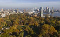 Herfst 2015, Het Park