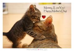 Happy Mother's Day ༺♡༻
